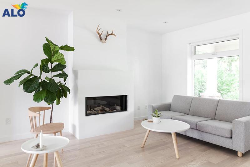 Sơn tường nhà mà trắng tạo sự hài hòa với thiên nhiên