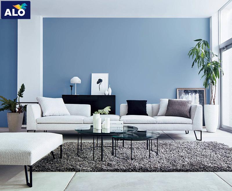 Màu sơn và đồ nội thất dành cho người trẻ tuổi