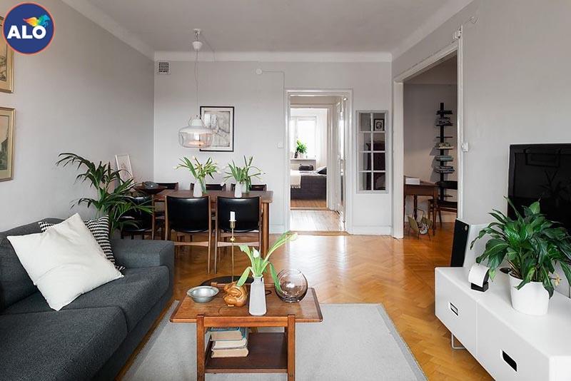 Trang trí thêm cây xanh cho phòng khách nhà bạn